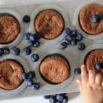Toddler Approved Paleo Lemon Blueberry Muffins