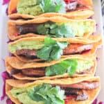 Overhead view of a white platter of portobello tacos in a corn tortilla with guacamole, cabbage and cilantro.