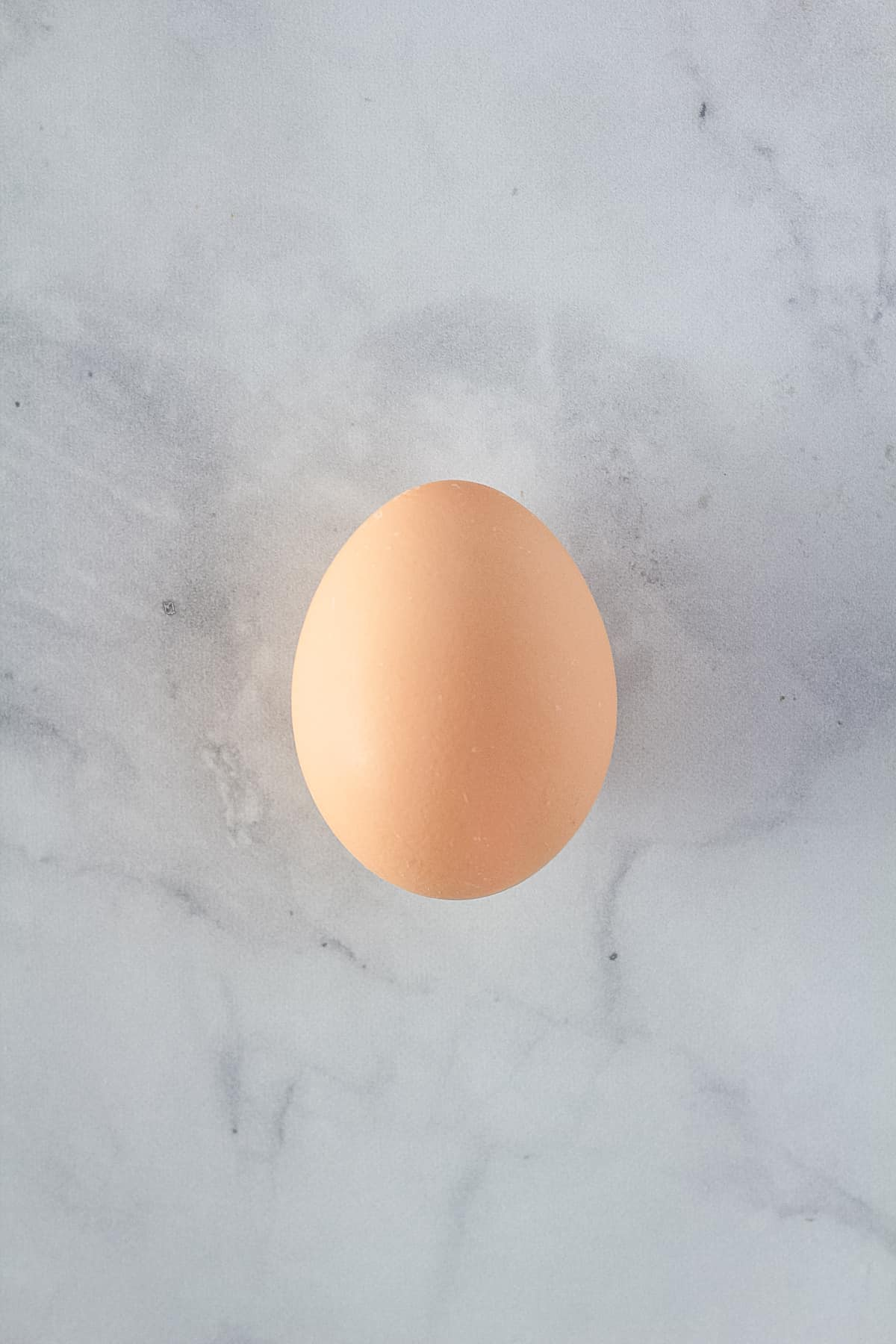 One brown egg.