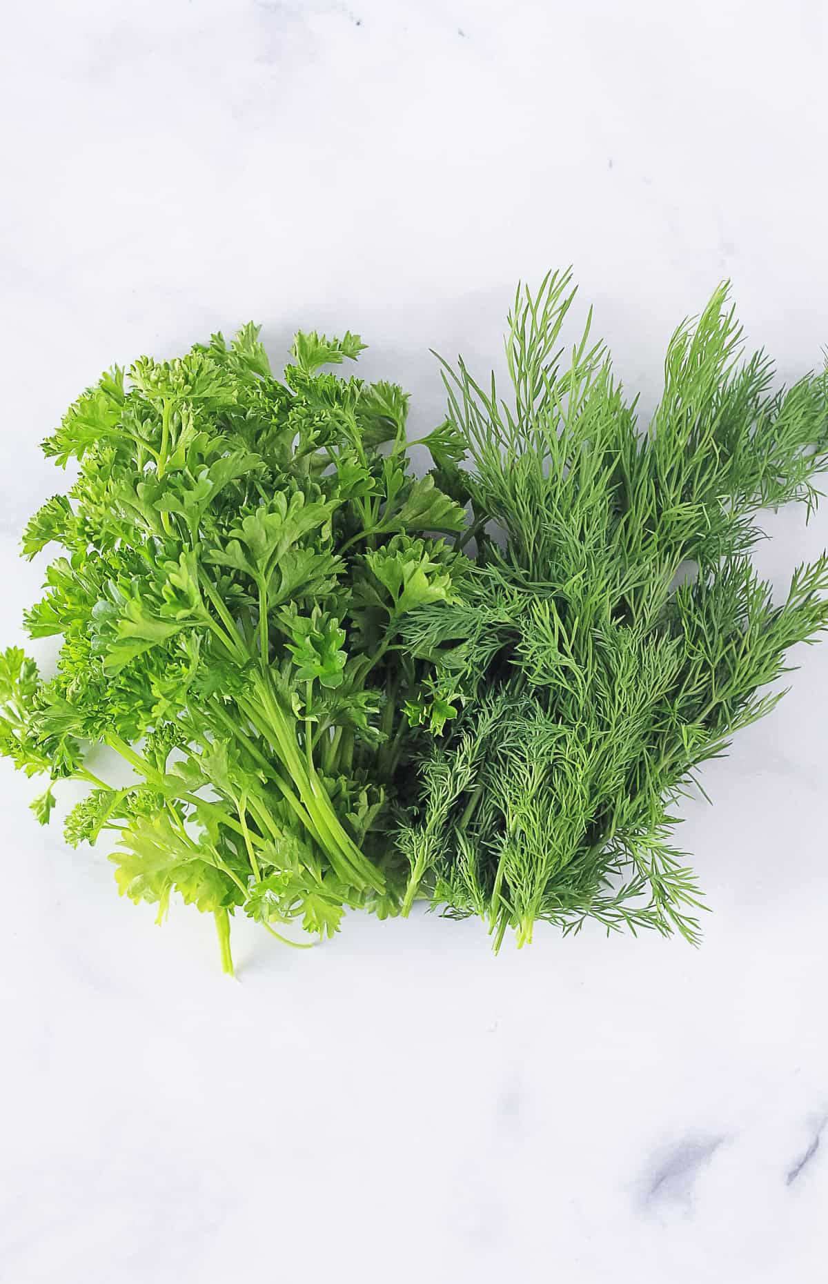 A bunch of fresh parsley and a bunch of fresh dill laying together.