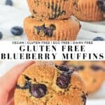 Fresh Blueberries and Vegan Gluten Free Blueberry Muffins.